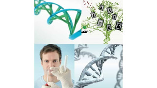Medical Genomics — ДНК тесты